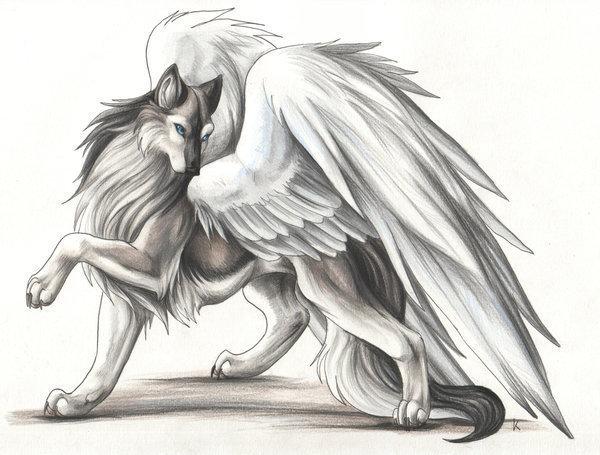 Wolfpaw Avatar